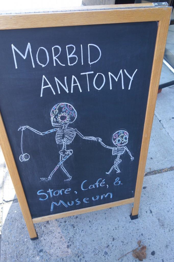 Morbid anatomy museum brooklyn