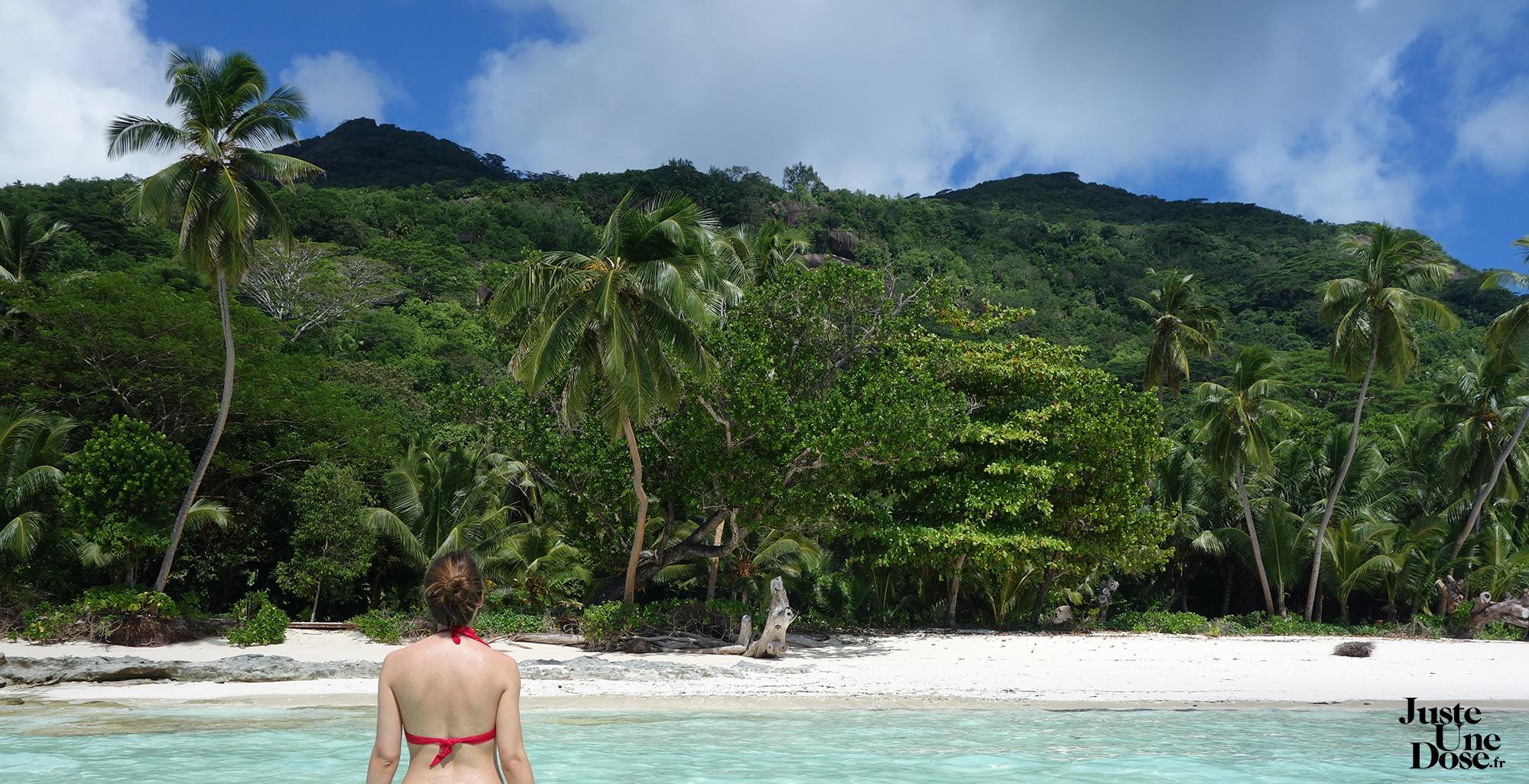 seychelles-ile-silhouette-carnet-voyage